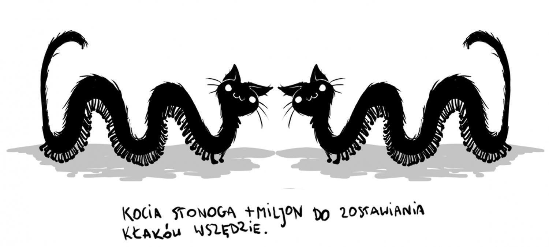 stonoga-e1408035605758