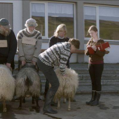 Islandzka opowiesc_3