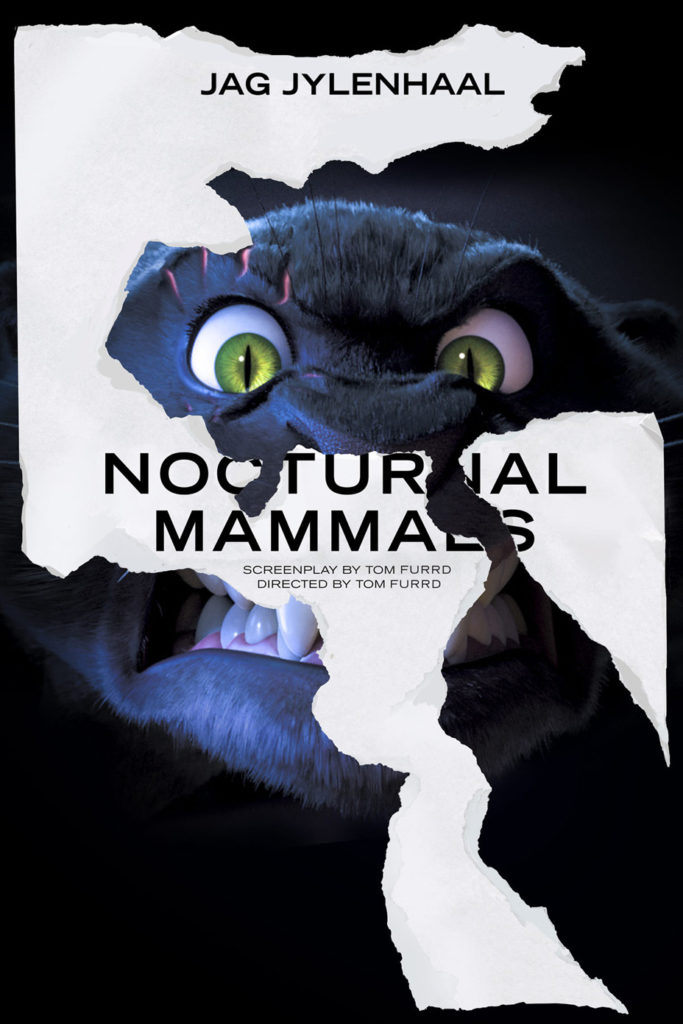 nocturnal_mammals_-_publicity_-_embed